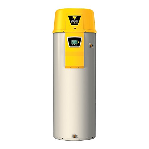 - AO Smith BTX-100 Tank Type Water Heater with Commercial Natural Gas