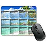 2017 Year Calendar Peaceful Beach Shore View with Palm Trees (SQUARE) Mouse Pad