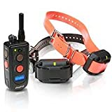 Dogtra Advanced 2 Dog 3/4 Mile Remote Trainer 2302NCP Review