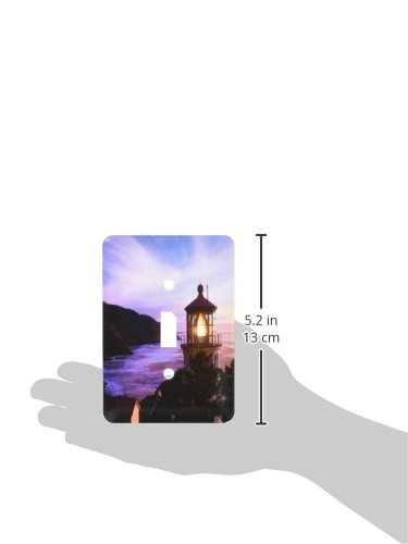 3dRose lsp/_93830/_1 Oregon Hecate Head Lighthouse-Us38 Jwi0141-Jamie and Judy Wild Single Toggle Switch Multicolored