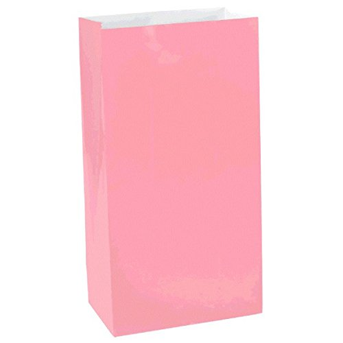 Packaged Paper Bags, Large | New Pink | Party Accessory -