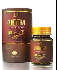 Cordythai Health Supplement Nourish Energy Booster with Cordyceps Stamina Blood Circulation Anti-oxidant for Men (Pack of 3) by Cordythai