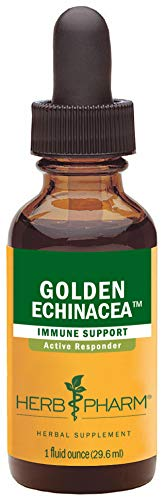 Herb Pharm Certified Organic Golden Echinacea Liquid Extract for Immune System Support - 1 Ounce