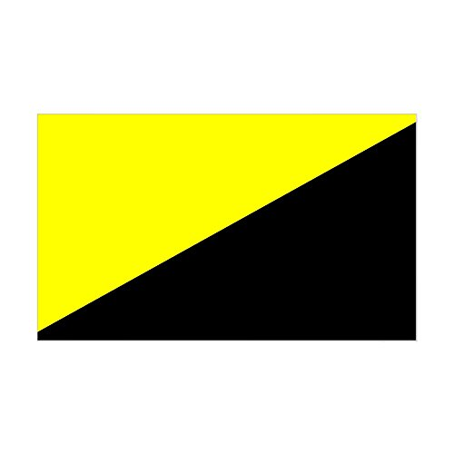 - CafePress Anarcho-Capitalist Flag Rectangle Sticker Rectangle Bumper Sticker Car Decal