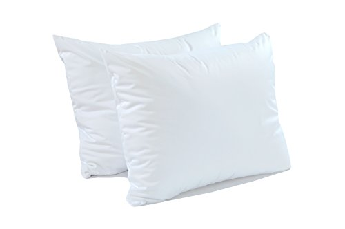 Pillow Protector Queen Size 2 Pack - Extra Soft Knit - Waterproof Zippered Hypoallergenic Case, Blocks Bed Bugs and Dust Mites Queen Size (20