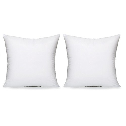 Acanva Hypoallergenic Pillow Insert Form Cushion Euro Sham, Set of 2