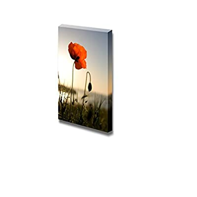 Canvas Prints Wall Art - Red Poppy in The Light of The Sunset - 24