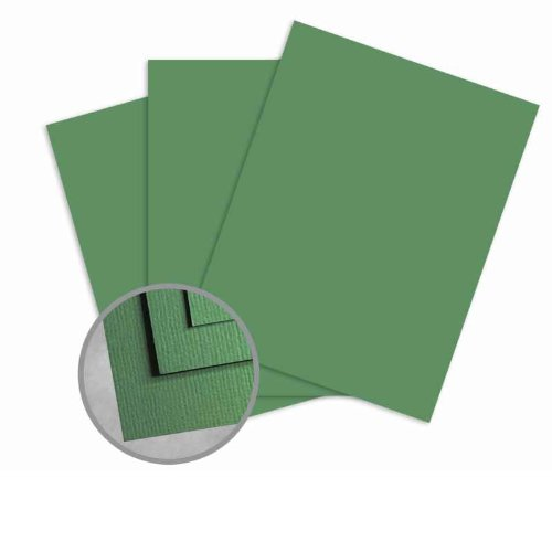 Treasures Grass Card Stock - 8 1/2 x 11 in 80 lb Cover Textured 25 per Package (Cover 80 Lb Cardstock Treasures)