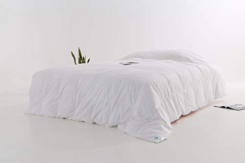 Natural Snow - February Snow Natural Materials Hypoallergenic Insert Comforter/Duvet/Quilt Medium Warmth All Seasons Solid White 300 TC 550 Fill Power 100% Cotton Down Proof Tabs (Twin 68x86inch(173x218cm))