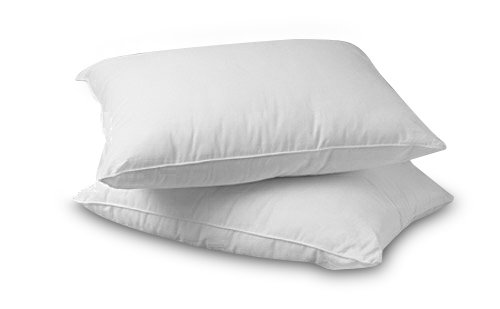 Premium 100 White Goose Down Firm Pillow Set Of 2 Queen