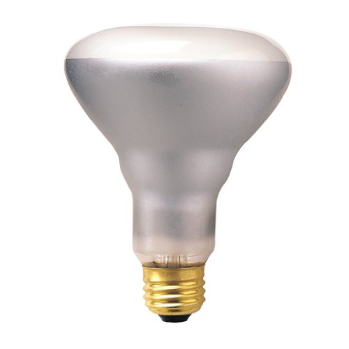 Bulbrite 50BR30FL2 50-Watt 120-Volt Incandescent BR30 Indoor Reflector, Flood