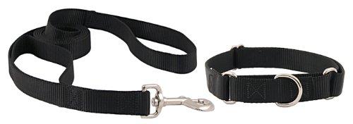 Country Brook Design   Martingale Nylon Dog Collar & Double Handle Leash-Black-L