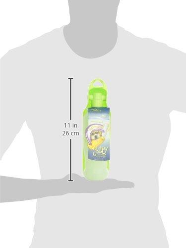GULPY Water Dispenser for Pet, 20-Ounce, Green