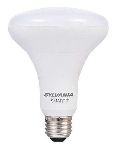 Dim Led Light Bulb in US - 5