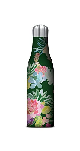 - Studio Oh! 17 oz. Insulated Stainless Steel Water Bottle Available in 11 Different Designs, Mia Charro Succulents