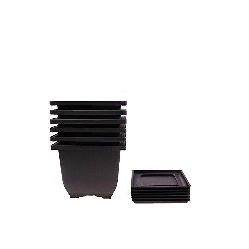 6PCS/Pack Retro Style Deep Square Small Bonsai Training Pots with Tray, Mini Plastic Mocha Garden Flower Pot 5