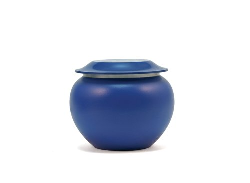 Near & Dear Pet Memorials Pagoda Alloy Pet Cremation Urn, 25 Cubic Inch, Sky Blue