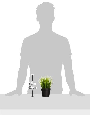 Ikea Artificial Potted Plant Wheat Grass 9'' Lifelike Nature Houseplant Decoration Fejka (SET OF 2) by Ikea Artificial Potted Plant (Image #1)