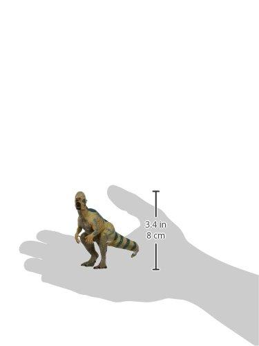 Baby Pachycephalosaurus 55005 B000GKU0TA Papo The Dinosaur Figure