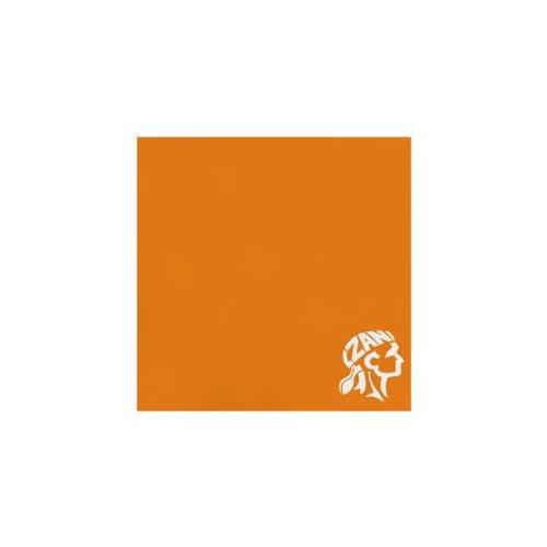 (High Visibility Orange Bandanna - One Size)