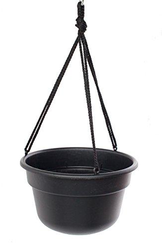 Bloem DCHB1200-12 12-Pack Dura Cotta Hanging Basket/Planter, 12-Inch, Black by Bloem