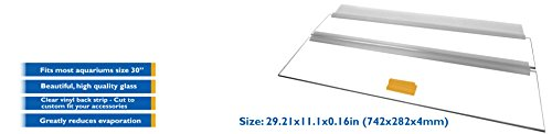 H2Pro-30-Glass-Canopy-for-20-Long-29-Gallon-Aquarium-Fish-Tank-2921x111