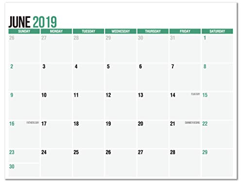 Magnetic Calendar Pad for Refrigerator, June 2019 to December 2020, 11 x 8.5, Thick Monthly Calendar Paper, Strong Fridge Magnets, 2019-2020 Academic (19 Months) ()