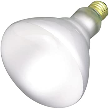 Satco Products S2853 120 Volt 65br40 Flood Light Bulb