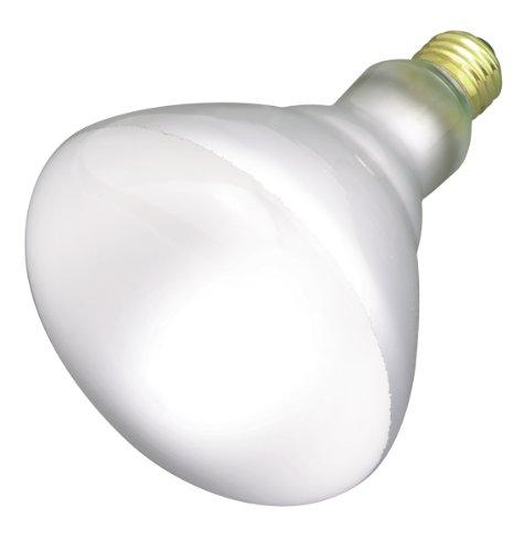 Satco Products S2853 120-Volt 65BR40 Flood Light - Incandescent Reflector Br40