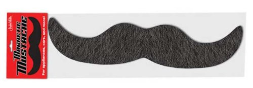 Accoutrements 12117 Giant Mustache Magnet