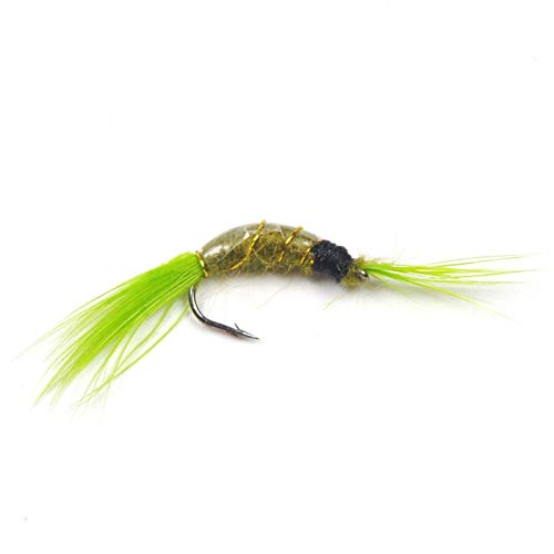 Fishing Lures - [8 PCS] #12 Scud Nymph Fly Olive Body Green Tail Trout Fishing Baits