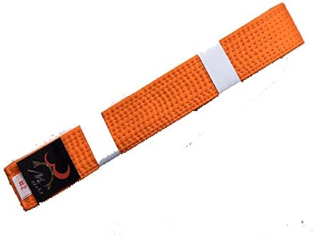 (メイショー) MEISHO 明将 特製 色帯 名前刺繍付 オレンジ帯