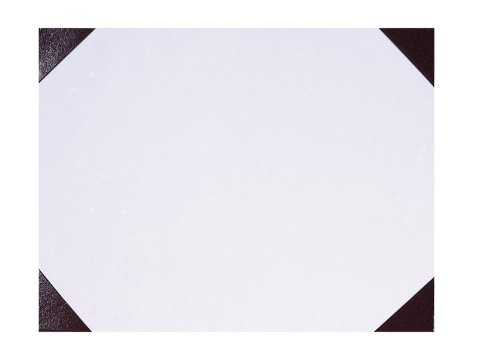 House of Doolittle Doodle Desk Pad, Orchid, 22 x 17 Inches (HOD473) (Ecotones Desk Calendar Pad Monthly)