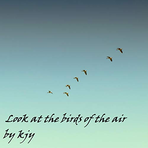 Look At The Birds Of The Air