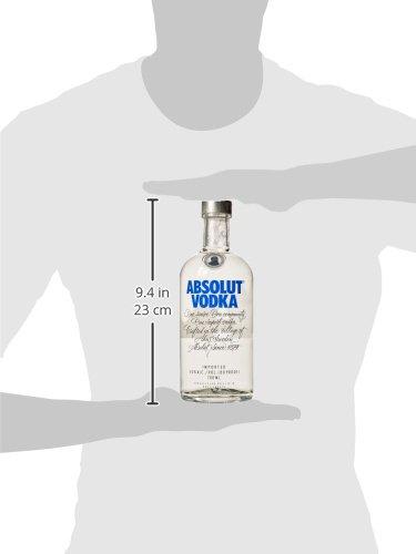 Vodka Bottle Sizes - Bottle Designs