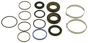 ACDelco 36-348473 Professional Steering Gear Pinion Shaft Seal Kit with Bushing, Clamp, and Seals