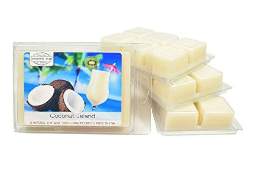 - Coconut Island Wax Tarts - Scented Wax Melts, Soy Wax Tarts, Natural Wax Melts, Handmade Soy Wax Tart, Candle Melts, Wax Tart Melts, Soy Wax Melts