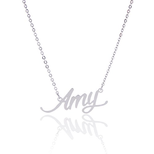 AOLO Stainless Steel Special Anniversary Gift for Her Amy Name Necklace