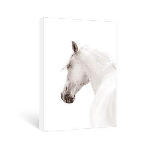 SUMGAR Canvas Wall Art Bedroom Black and White Framed Paintings Modern Horse Pictures Animal Artwork,16x24 inch
