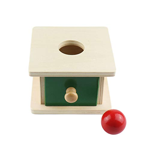 (BST Toys- Wooden Montessori Infant Toys Montessori Imbucare Box with Ball Learning Educational Toys for Toddlers Birthday Gift)