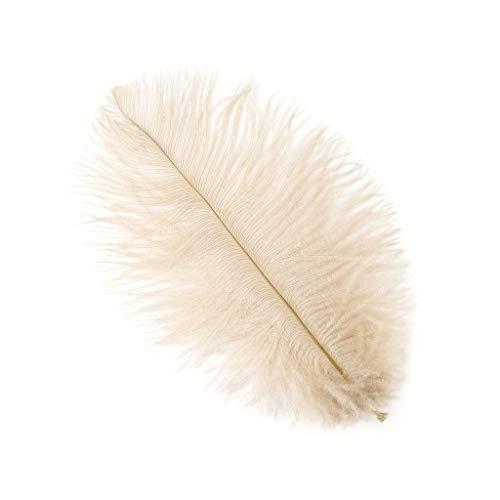 Beige Ostrich - Beige Ostrich Feather Supplies 12pc 4-8inch DIY Wedding Home Party Decor