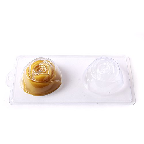 Cavity Summer C11 World Moulds product image