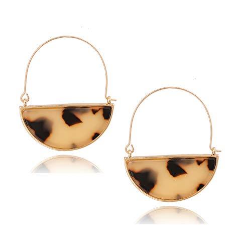Acrylic Earrings For Women Girls Geometric Circle Resin Drop Dangle Earrings Statement Fan Hoop Earring Tortoise Stud Earrings Fashion Jewelry (Leopard)