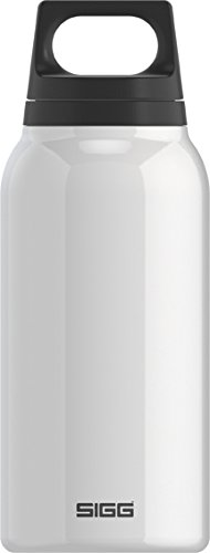 SIGG Classic Thermo 0.3-Liter Water Bottle with Tea Filter, White (Sigg Water Bottle Cleaner)