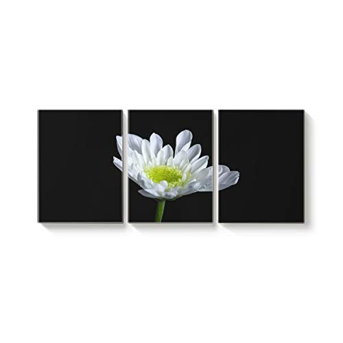 Arts Language 3 Piece Canvas Wall Art Painting for Office Bedroom Living Room Home Decor,White Chrysanthemum Printed Black Pictures Modern Artworks,24 x 32in x 3 Panels (Definition Votive)