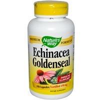 Echinacea manière de la nature et Goldenseal, 450 mg, 180 Capsules