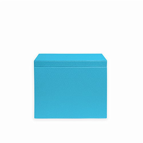 Spruce Storage Letter Hanging File Box (TURQUOISE/ CITRON) by Spruce Storage