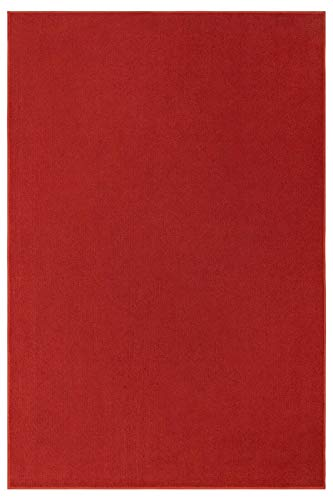 Indoor Outdoor Red Area Rugs with Premium Non Skid Backing Great for Patio, Porch, Deck, Party, Garage, Boat, Event, Basement, Wedding Tents and More Available Size 4 x6