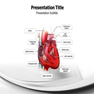 Congestive Heart Failure Powerpoint(ppt) Templates   Ppt Template on Congestive Heart Failure  Congestive Heart Failure Powerpoint templates
