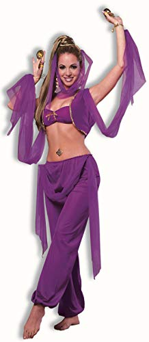 Forum Novelties Women's Desert Princess Costume, Purple,